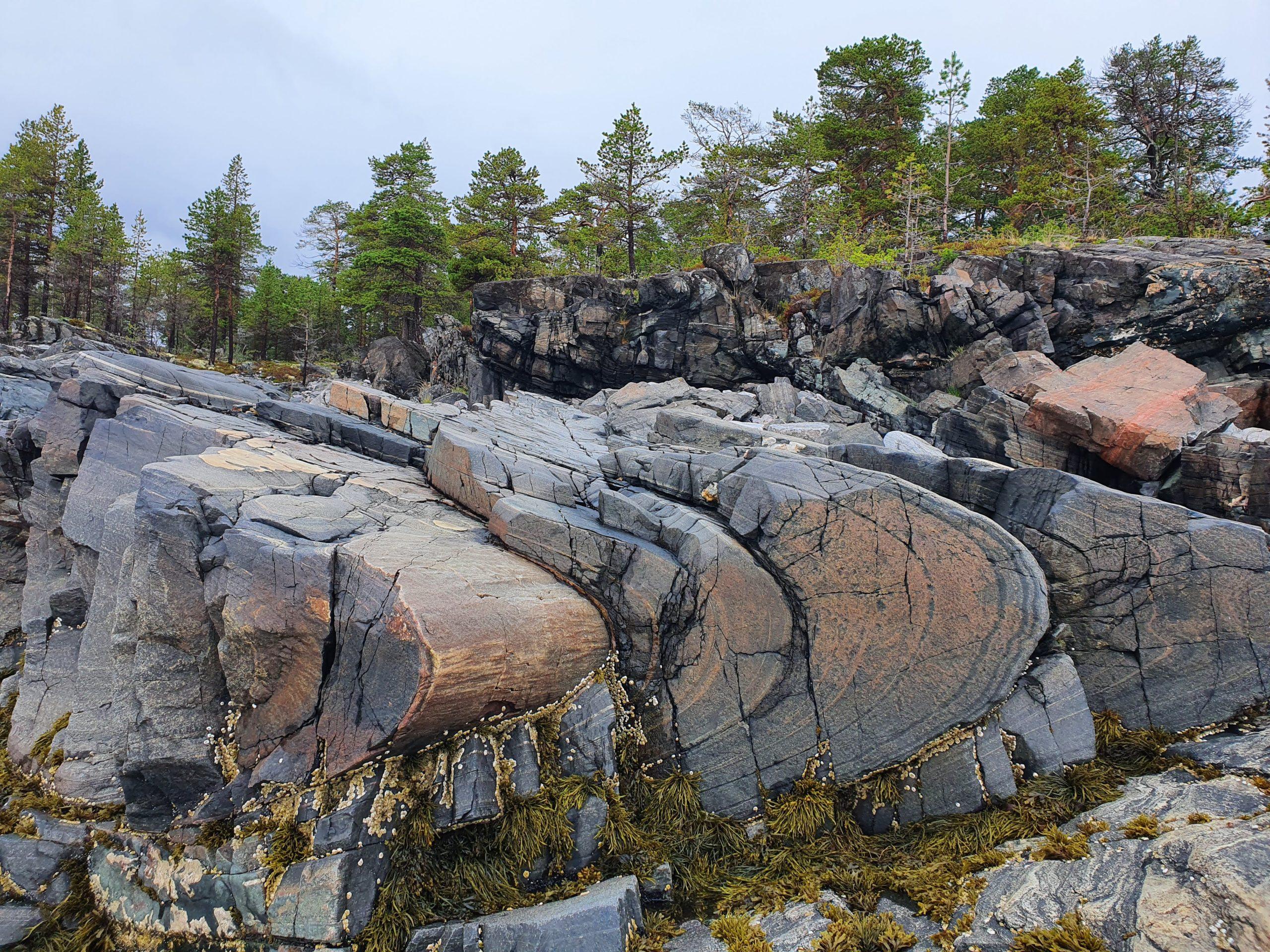 Каменные складки Пежострова