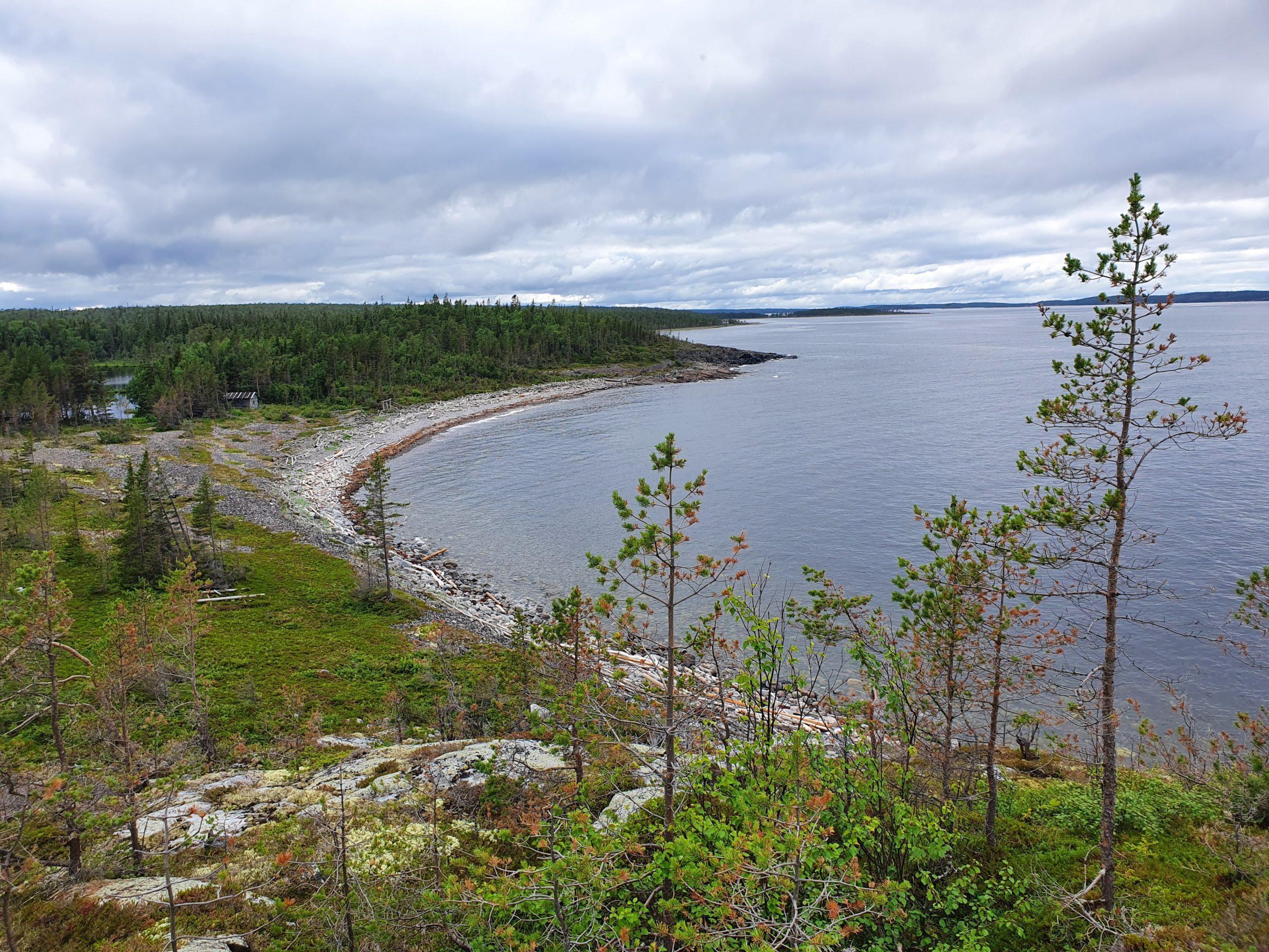 Обрывистый северный берег Пежострова с рыбацкой избушкой и озером позади.