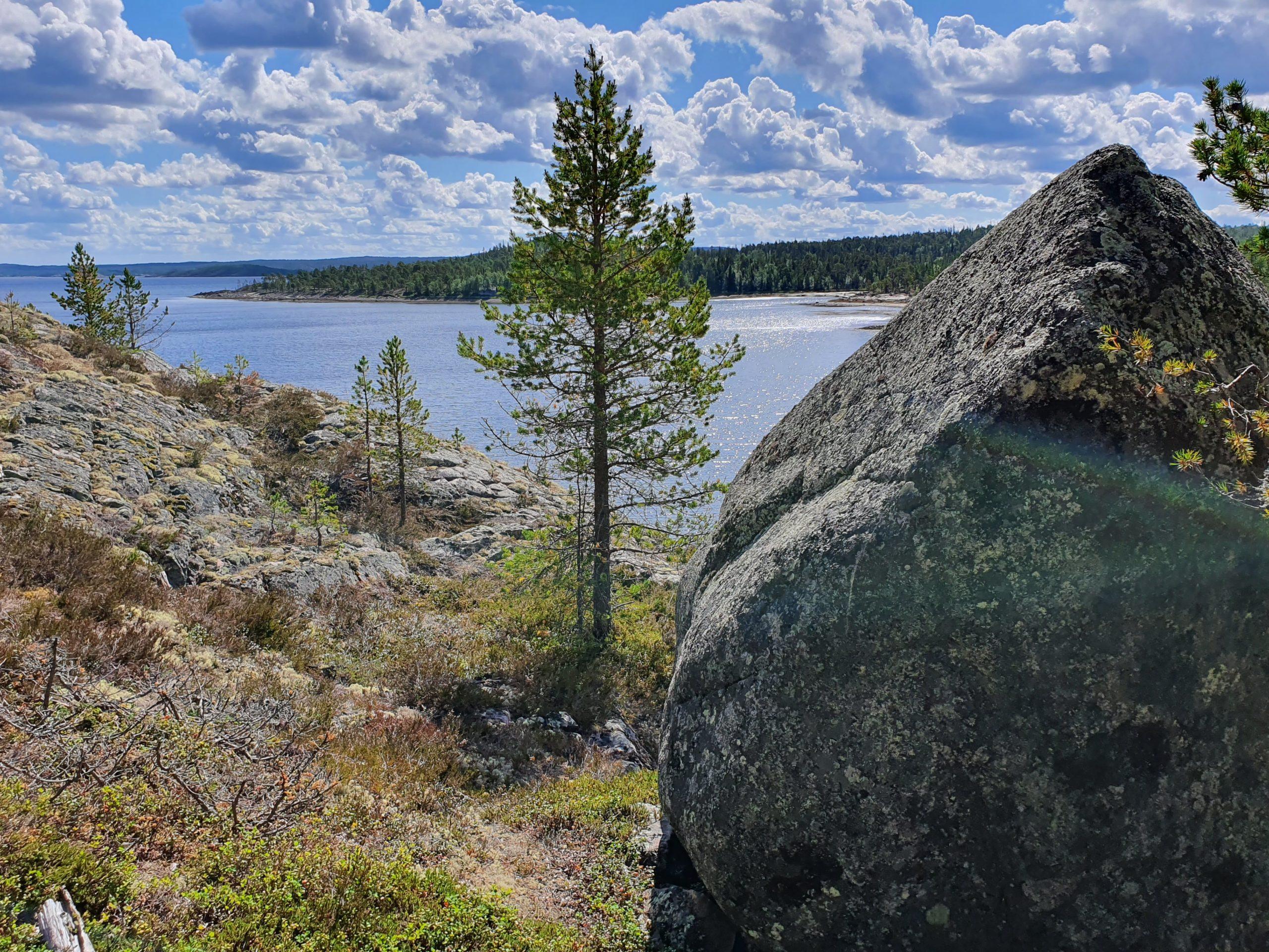 Большой и удивительный камень на склоне гряды Пежострова.  Сдвинуть вниз мы так его и не смогли.